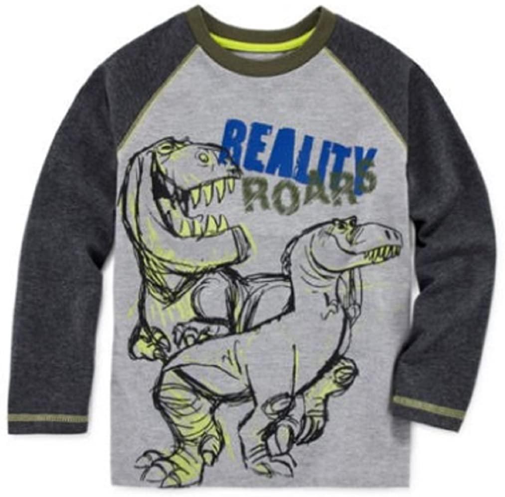 Okie Dokie Disney Apparel Good Dinosaur Raglan Tee - Toddler Boys 2t-5t Size 2T Color Grey