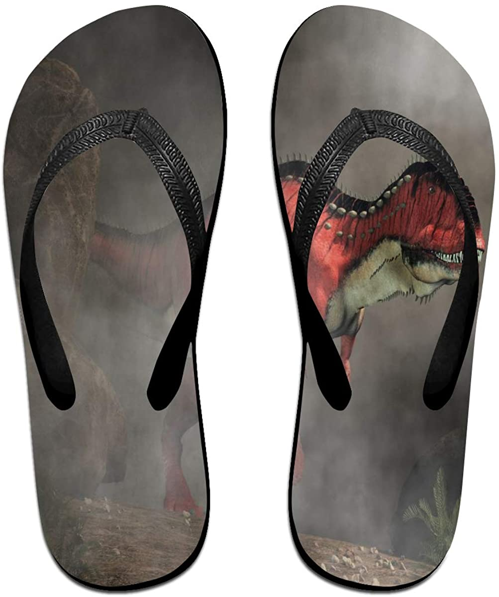 Mens Slippers Red Animal Dinosaur Appears in Fog Comfy Cozy Flip Flop Rubber House Outdoor Sandals