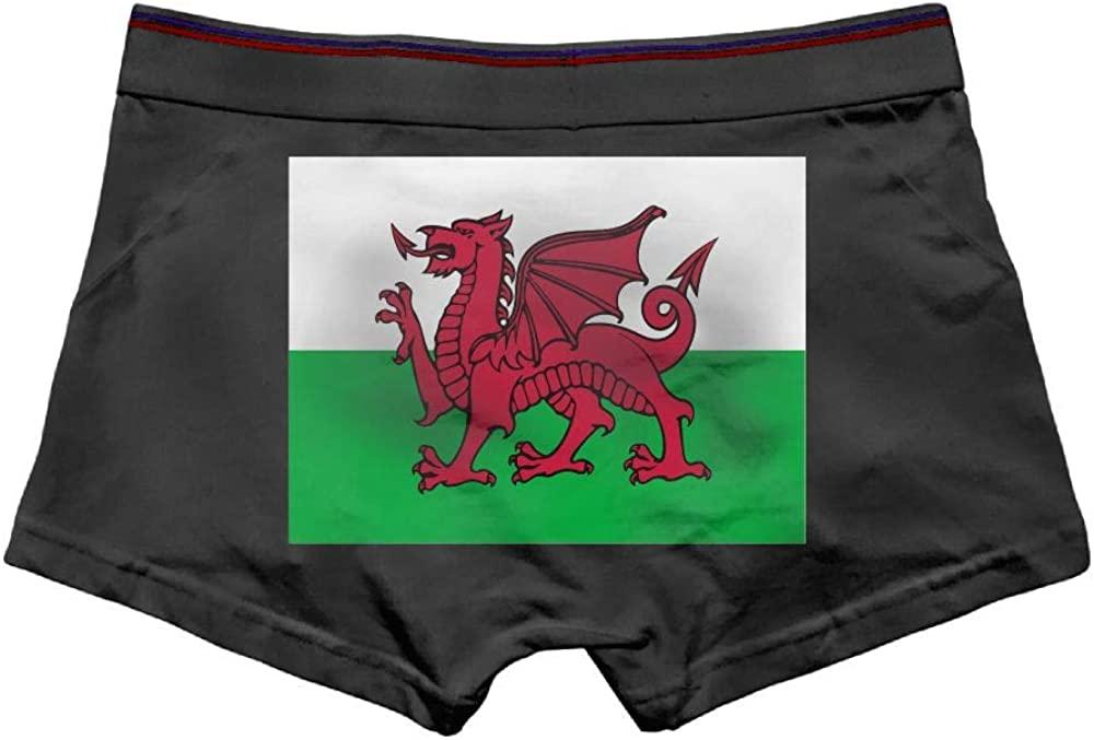Huitong Shengshi HTSS Welsh-Flag Cool Men's Boxer Briefs Underwear Low Waist Panties for Boy