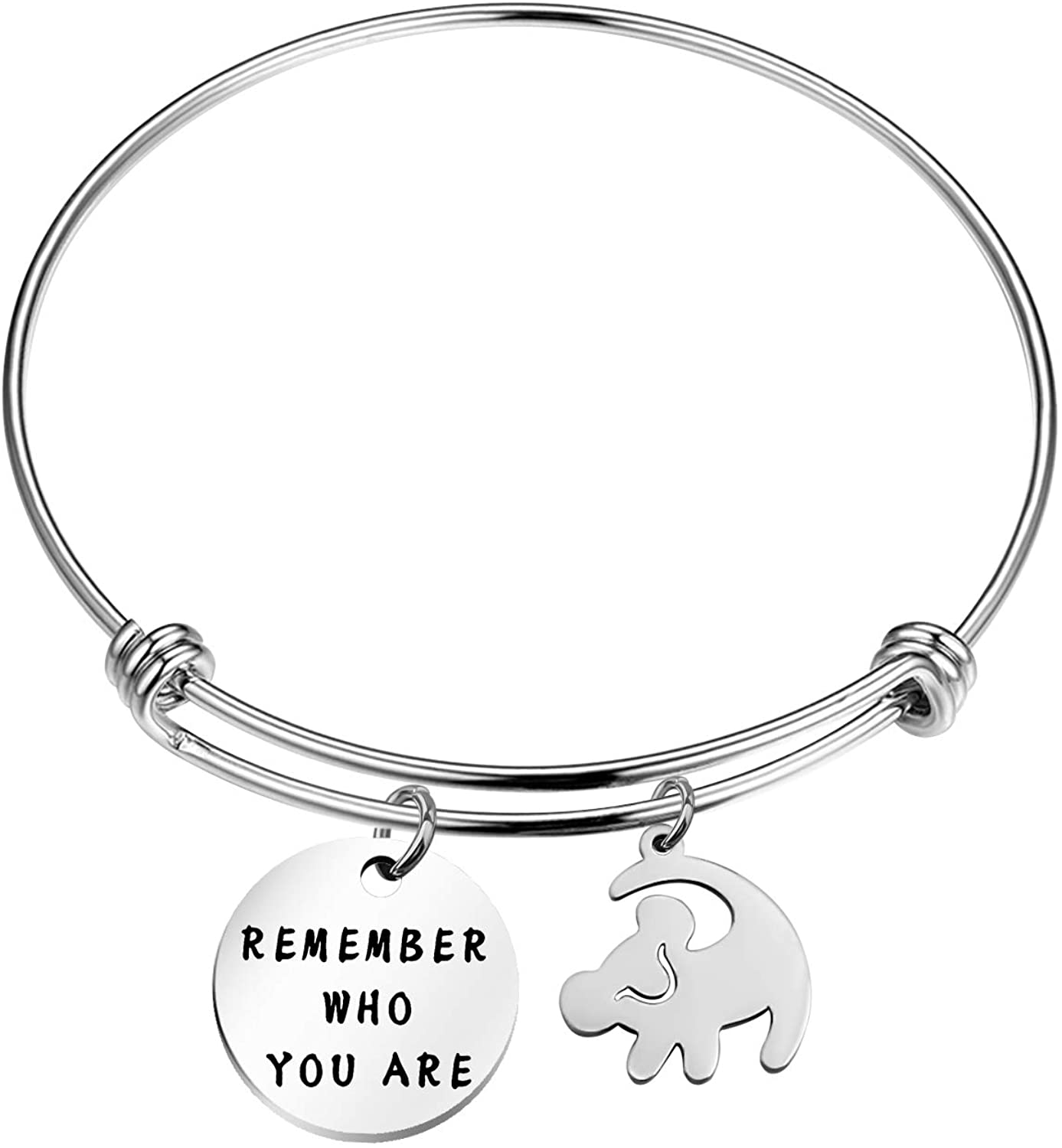 TGBJE Remember Who You are Bracelet Inspired Bangle Lion King Gift for Friend