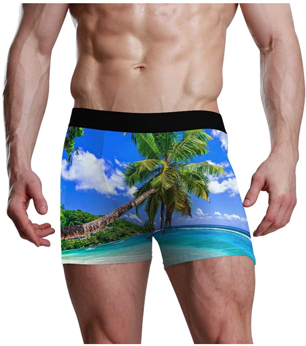 CaTaKu Tropical Tree Beach Men's Boxer Briefs Underwear S-XL