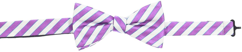 Countess Mara Mens Purple & White Plaid Pre-Tied Bow Tie