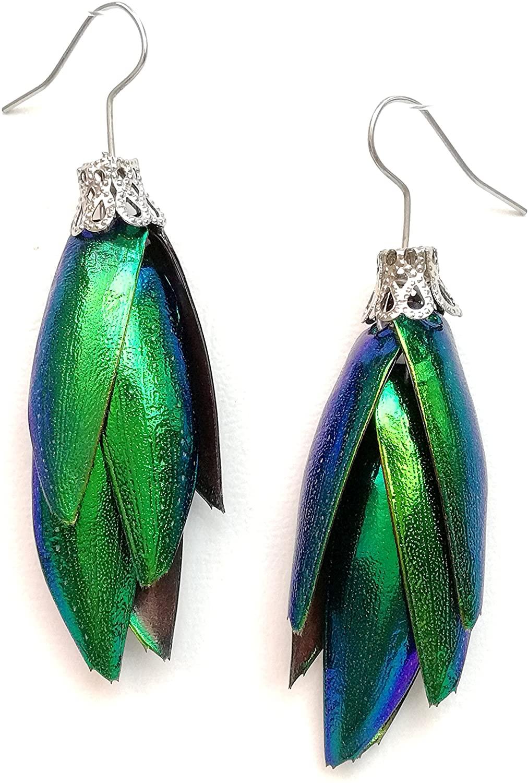 Real Natural Real Jewel Beetle Wing Dangle Earrings Resin Coated Handmade Jewelry