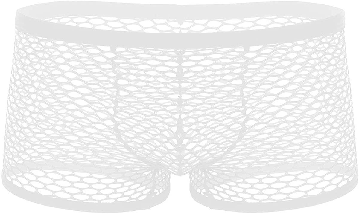 iiniim Men's Sexy Fishnet See Through Boxer Briefs Low Waist Bulge Pouch Underwear