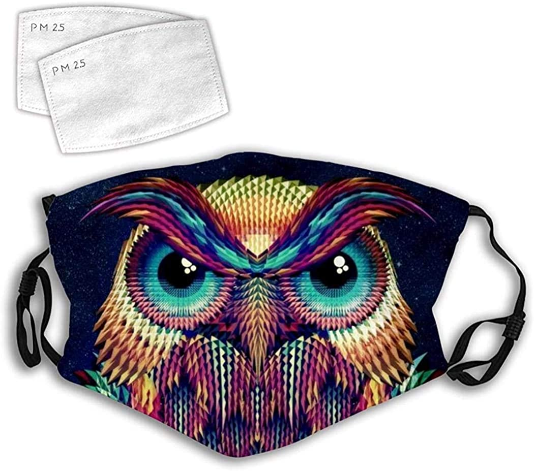 Cloth Face Mask Washable Colorful Owl Face Anti Filter Dust Fabric Face Covering Mask Reusable Printed B13