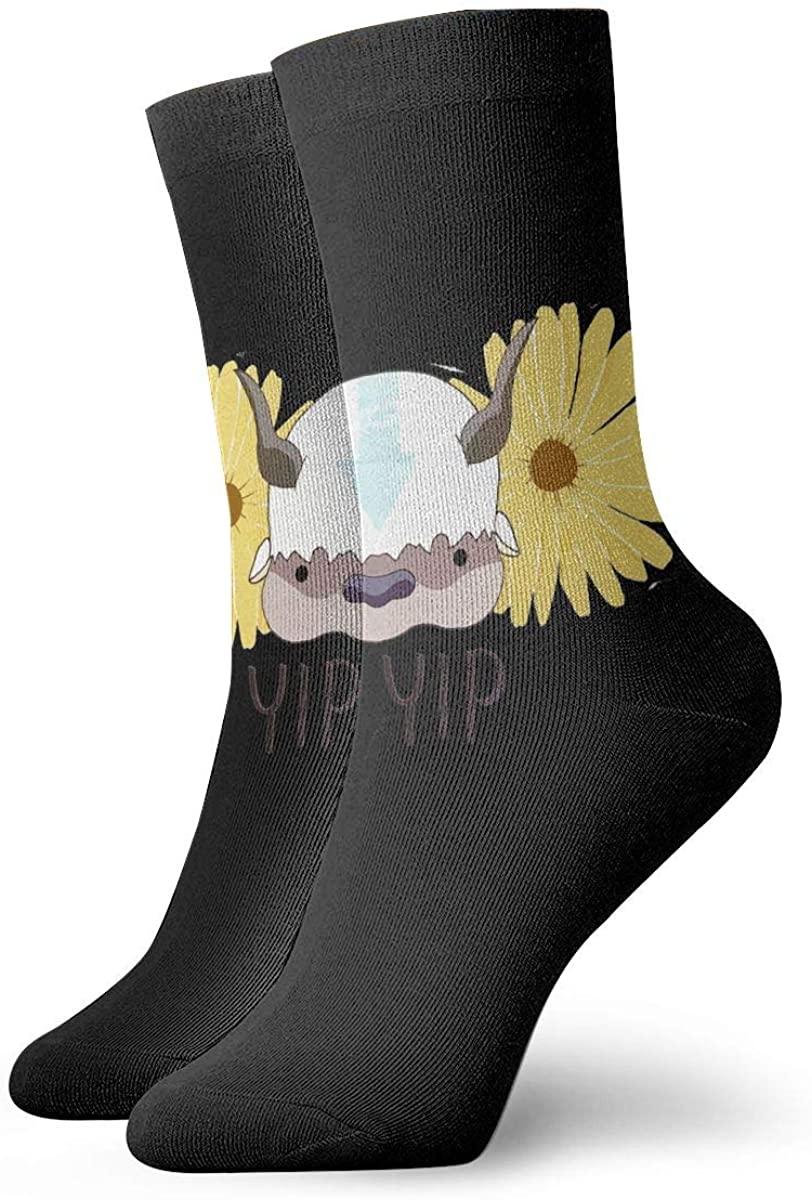 Dfmdfng Avatar The Last Airbender Appa Customized Ventilating Comfort Fit Performance Socks