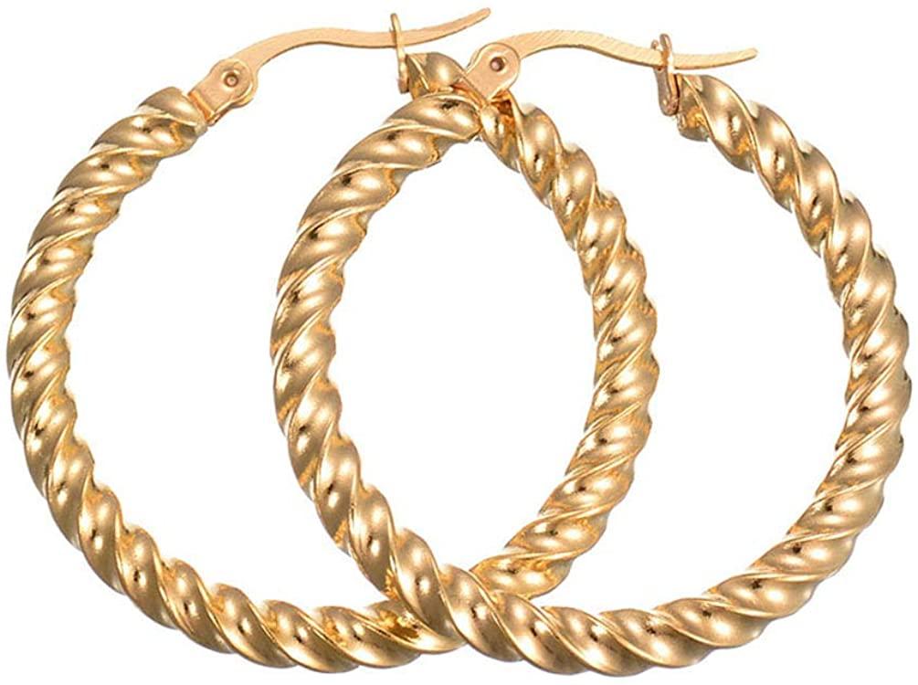 Twist Round Hoop Earrings Surgical Titanium Steel Hypoallergenic Round Hoop Earrings