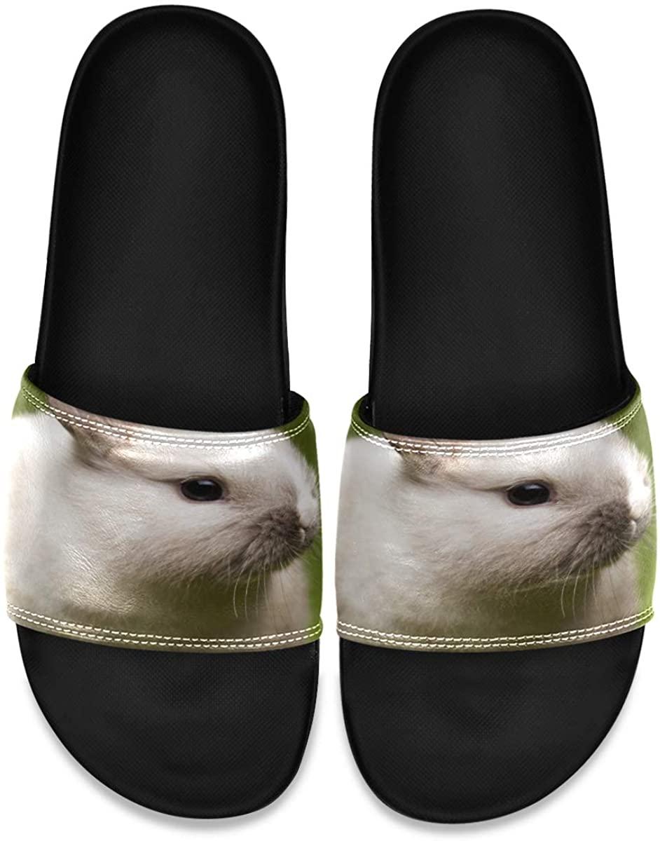 Men's Shower Slides Fabulous American Eagle Slide Sandal, Slippers, Sandals for Men