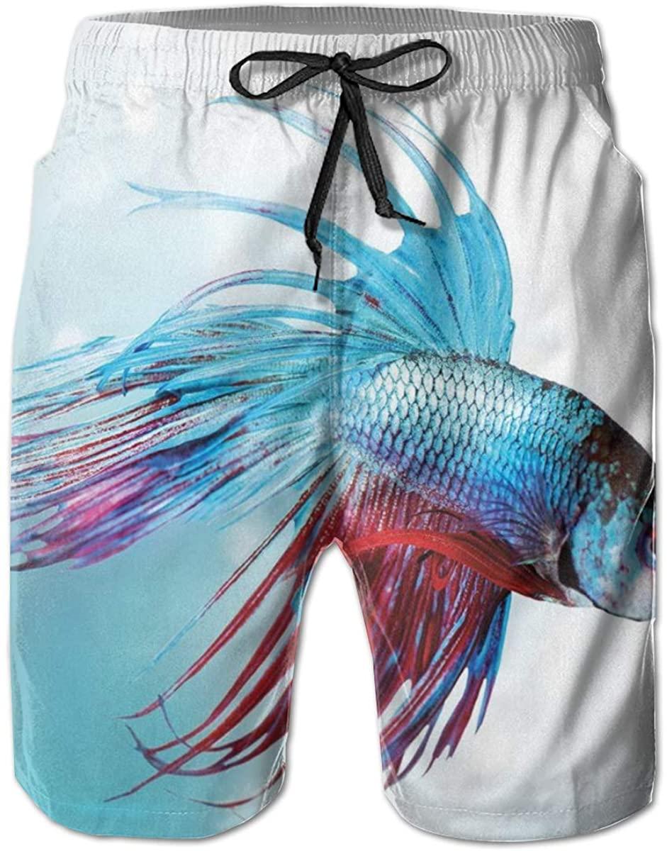 Men's Swim Trunks Quick Dry Beach Shorts Siamese Fighting Betta Fish Swimming in Aquarium Aggressive Sea Animal L