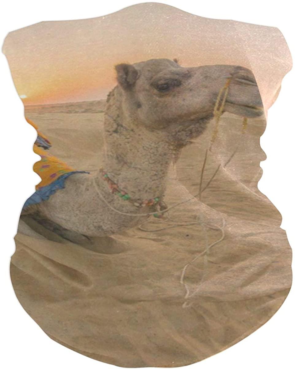 Horse Against Sand Storm Face Mask UV Sun Mask Dust Wind Neck Gaiter Magic Bandana
