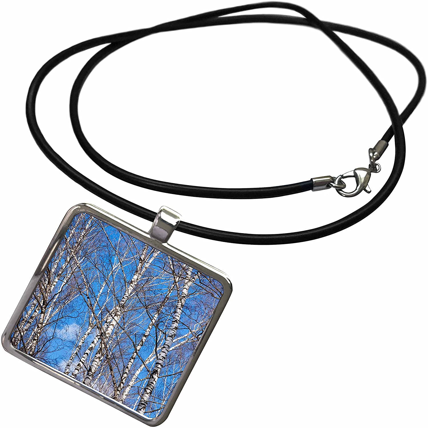 3dRose Alexis Photography - Seasons Spring - Birch Trees on a Sunny Day in Early Spring. Blue Sky - Necklace with Rectangle Pendant (ncl_283844)