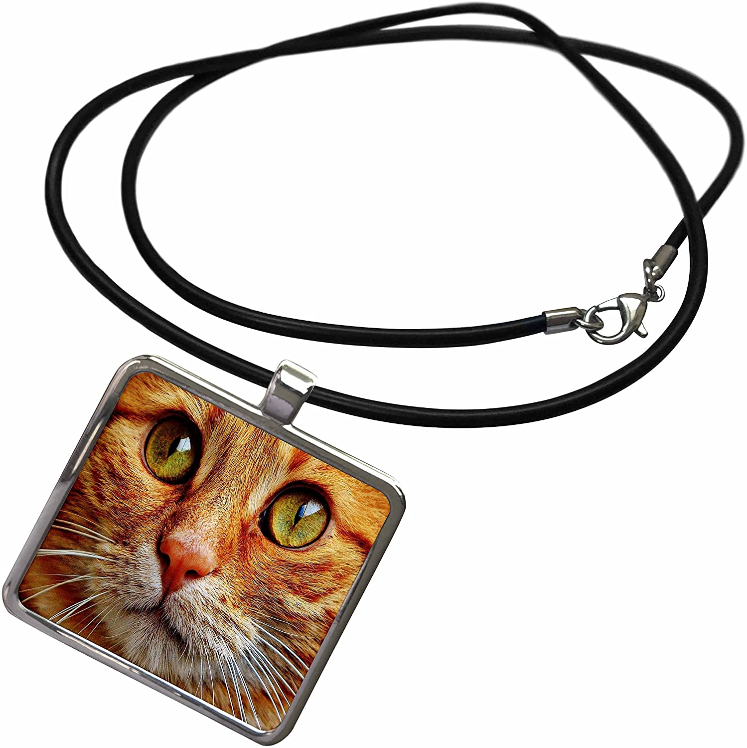 3dRose Florene Cat - Image of Extreme Close Up of Orange Tabby - Necklace with Rectangle Pendant (ncl_245055)