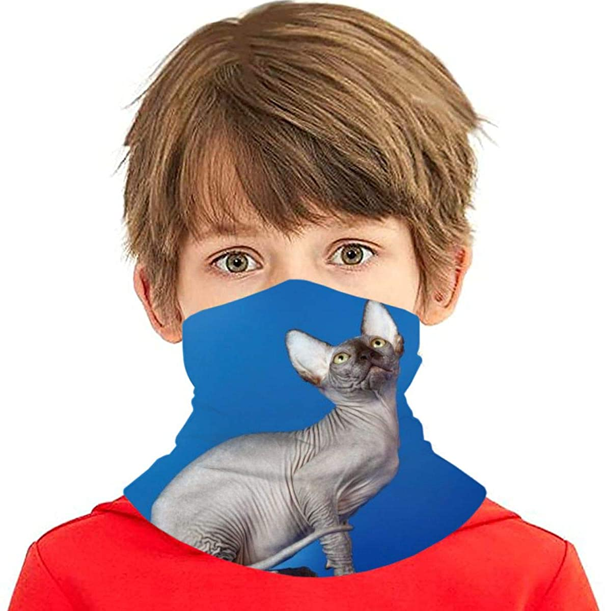 Youth Face Bandanas, Gorgeous Hairless Sphynx Cat Reusable Face Mask Half Face Towel Mouth Cloth Facial Scarf Variety Headscarf