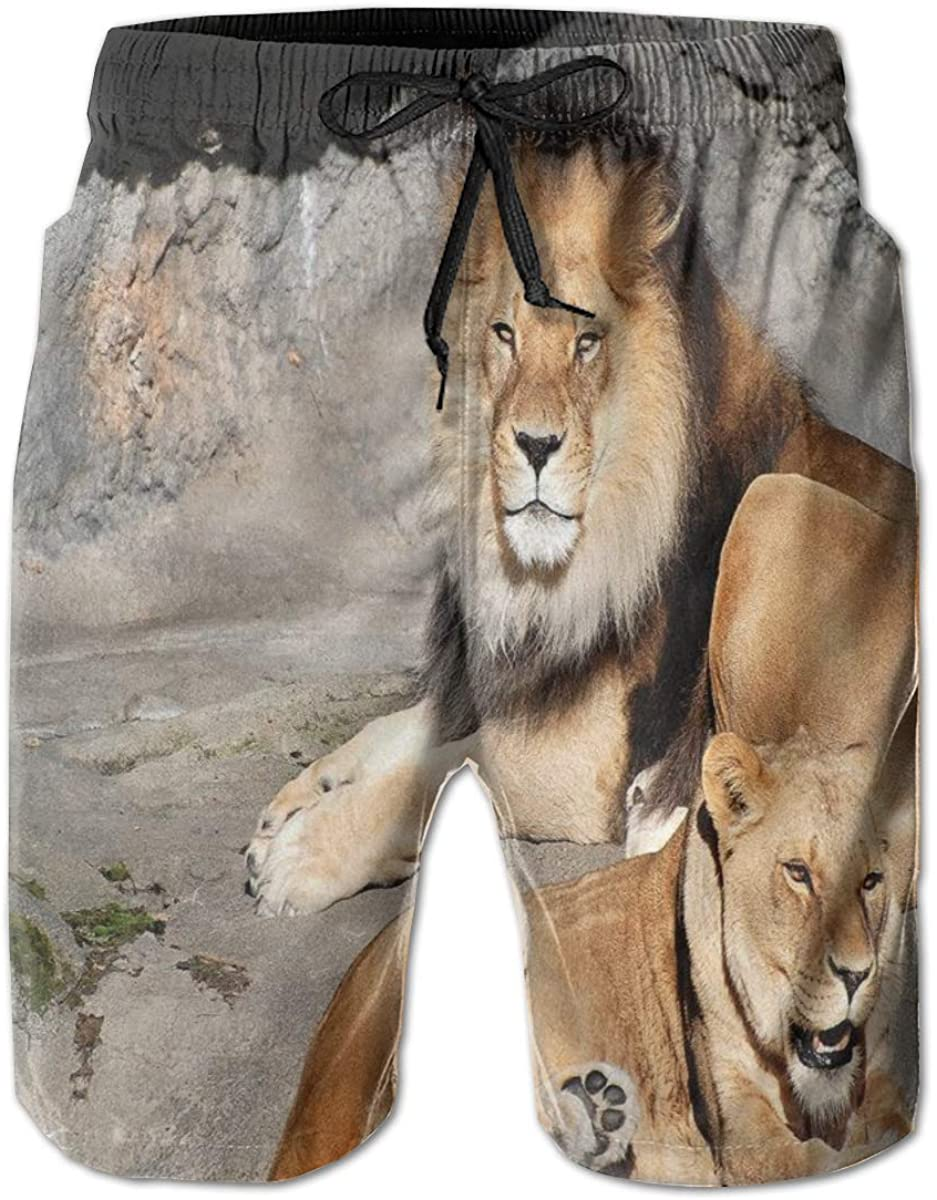 Men's Swim Trunks Quick Dry Beach Shorts Male and Female Lions Basking in The Sun Wild Cats Habitat King of Jungle XXL