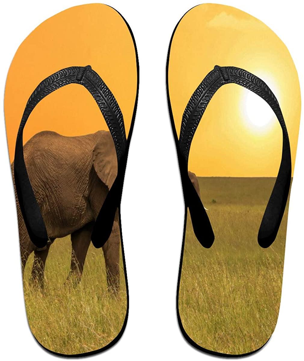 Mens Flip Flop Slippers African Animal Elephants in Savanah Sunset Rubber Comfy Flip Flops Outdoor Beach Sandals