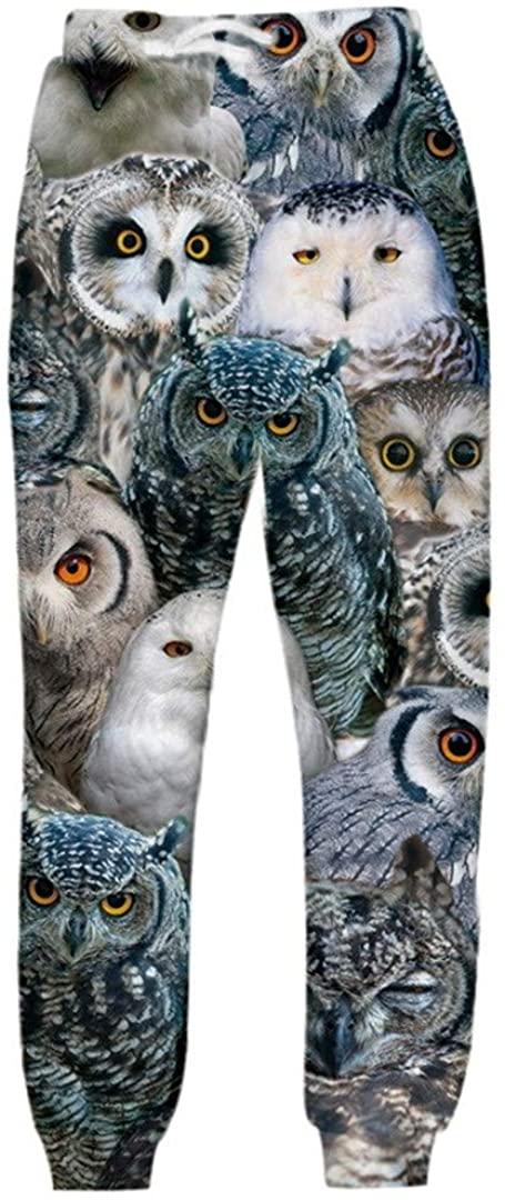 Women Men 3D Animal Eagle Print Neck Hooded Hoodies Sweatshirt Pants Casual Tracksuit Streetwear 2 Piece Set