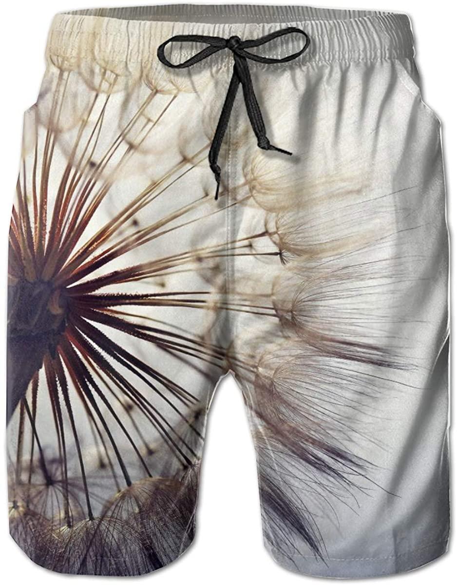 Mens Swim Trunks Male Swimtrunks Board Shorts Dandelion Super Close-Up Water Resistant Surfing Beach Summer Outfit Pants
