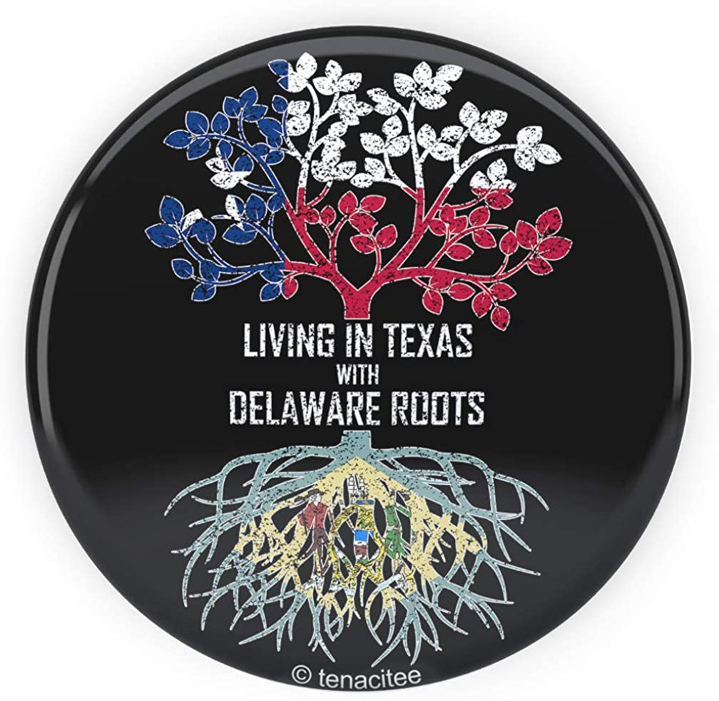 Tenacitee Living In Texas with Delaware Roots Pinback Button