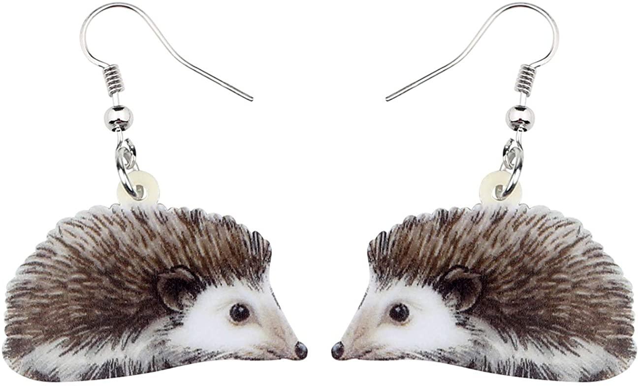 NEWEI Acrylic Hedgehog Earrings Drop Dangle Cute Animal Jewelry For Women Girls Teens Gift Accessories Charms