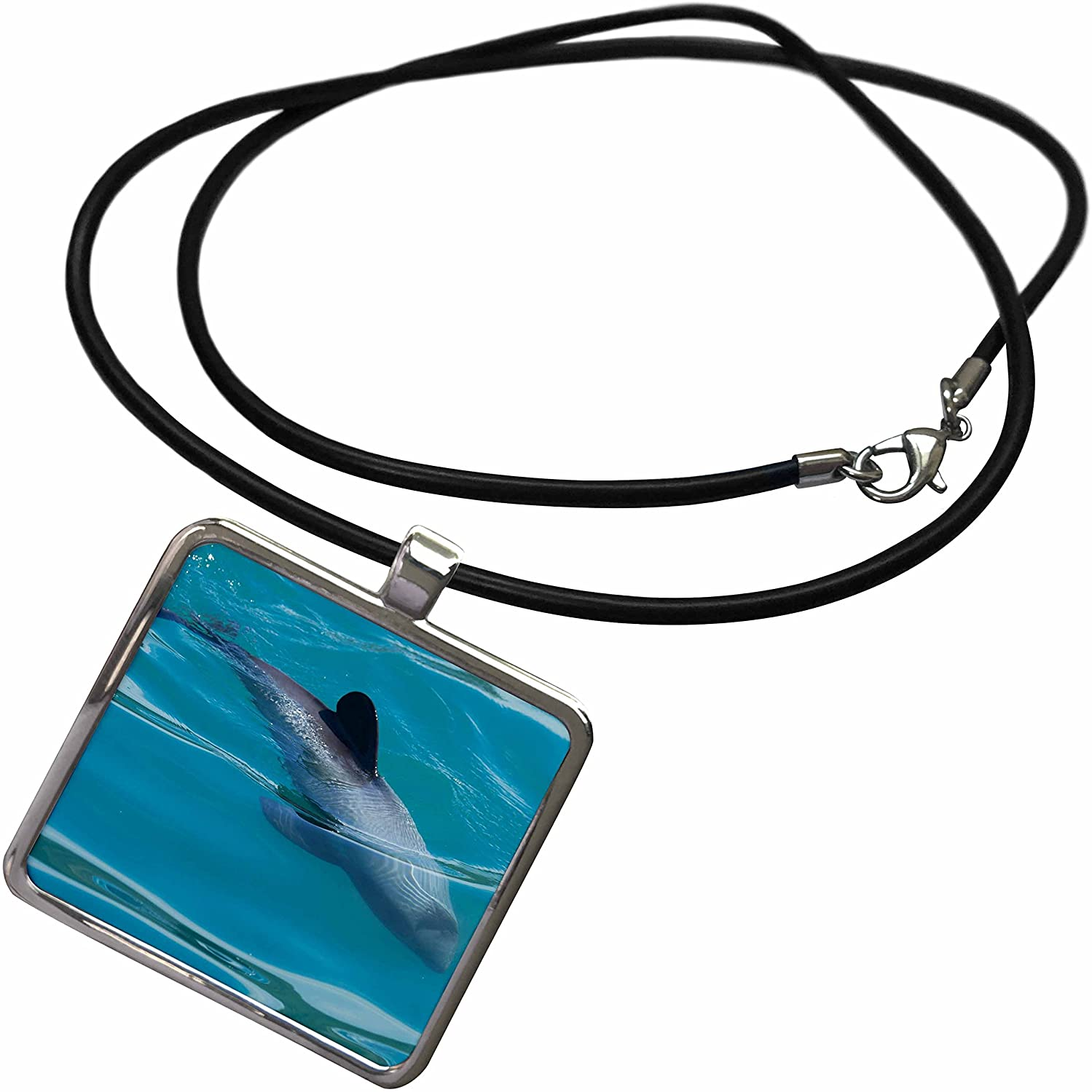 3dRose Danita Delimont - Dolphins - Hectors Dolphin, Akaroa Harbour, New Zealand - AU02 DWA6778 - David Wall - Necklace with Rectangle Pendant (ncl_133674)