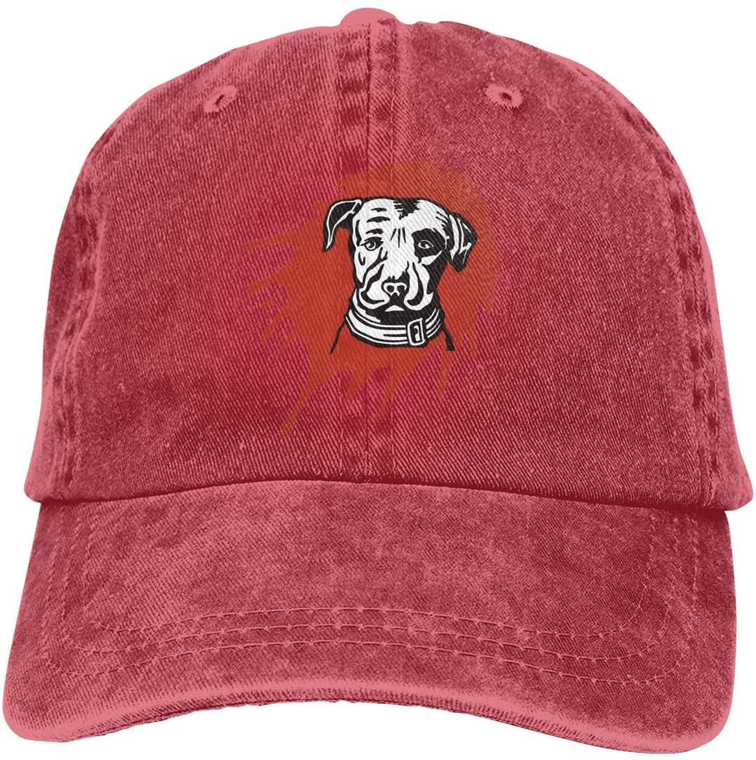NOT Lagunitas Beer Logo Adult Cowboy Hat
