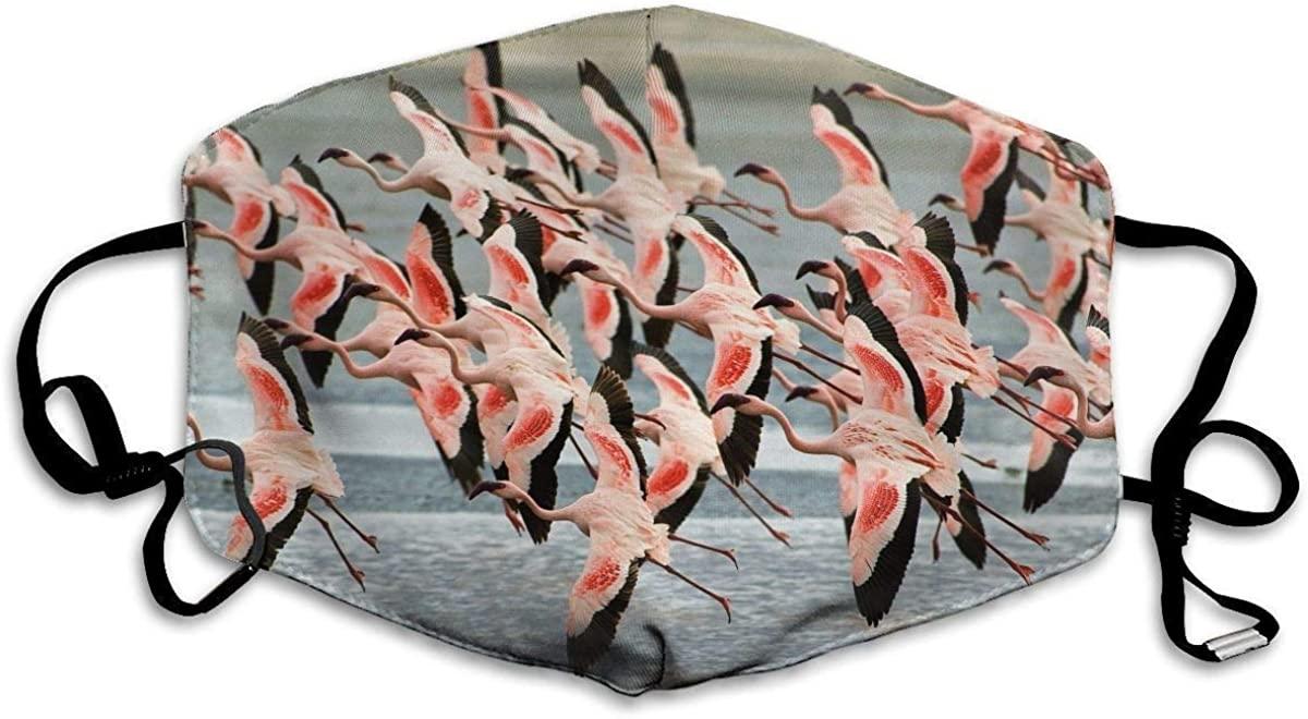 BOKUTT Windproof Decorative Masks,Art Flamingo Pattern Unisex Washable Reusable Fashion Design for Girls Women Boys Men-Washable and reusable