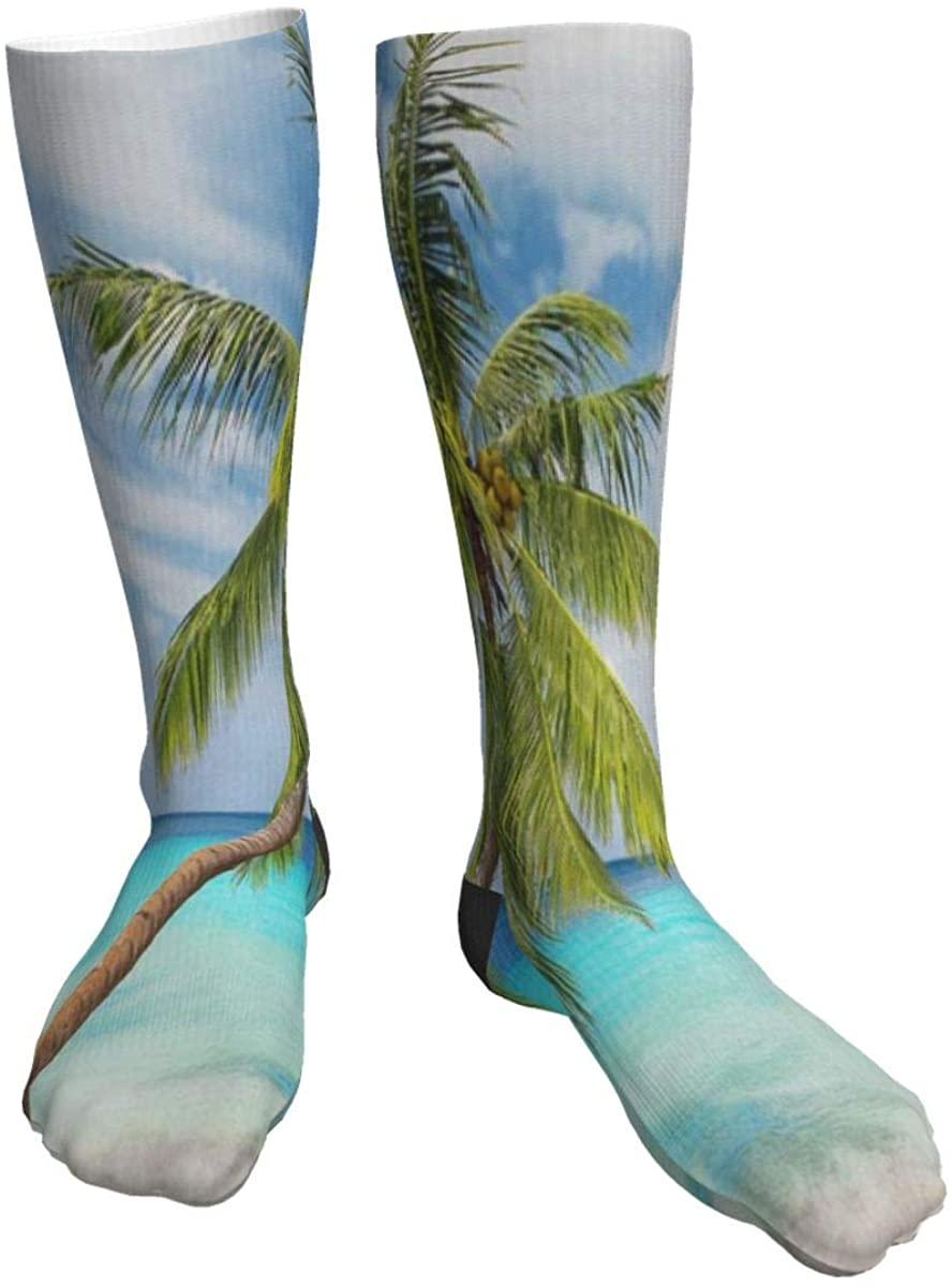 Mens Womens Crew Socks Palm Tree Palm Leaf Novelty Mid Calf Dress Cycling Socks Unisex