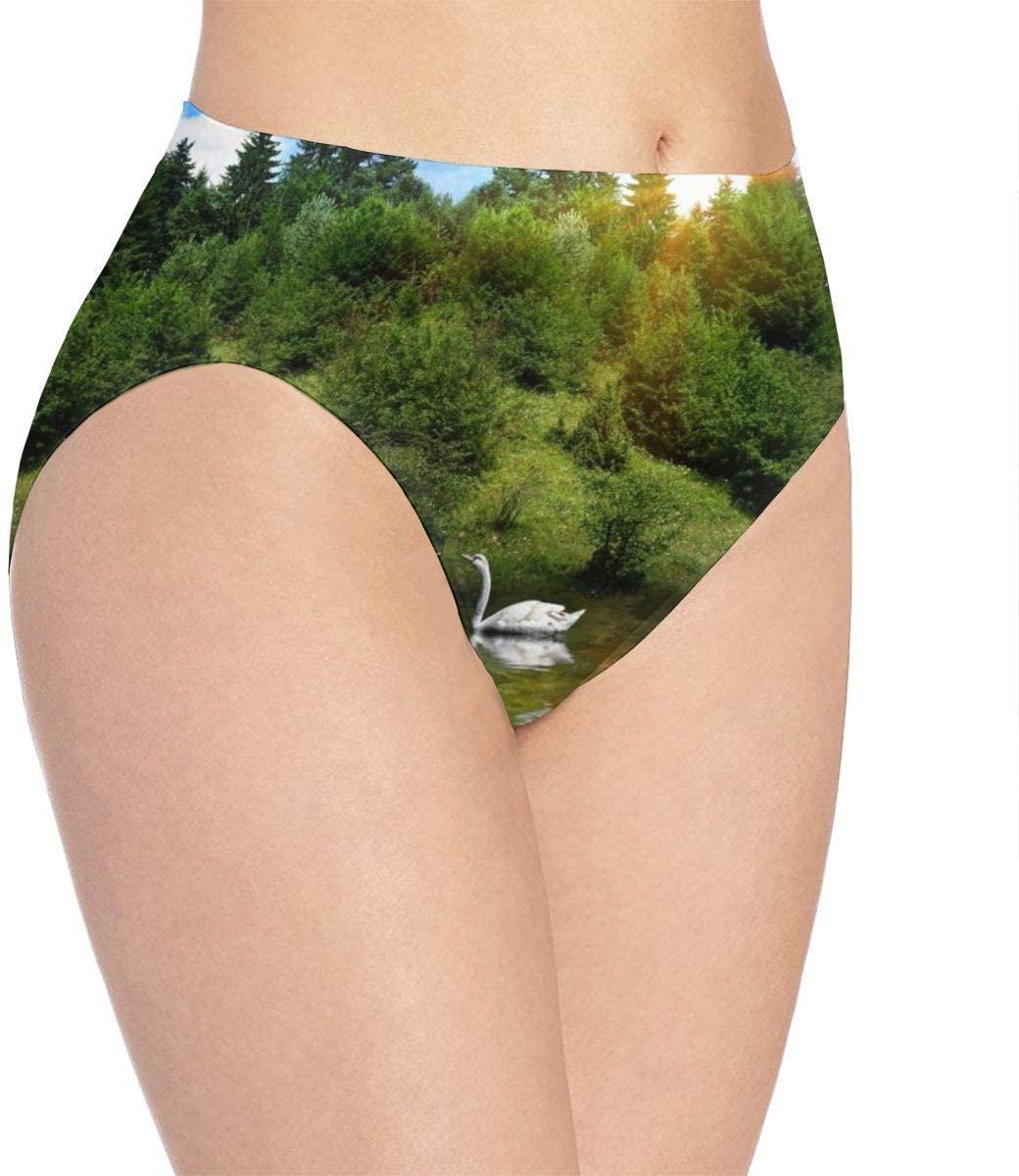 Kjaoi 3D Print Soft Women's Underwear, Duck in The Lake Fashion Flirty Sexy Lady's Panties Briefs