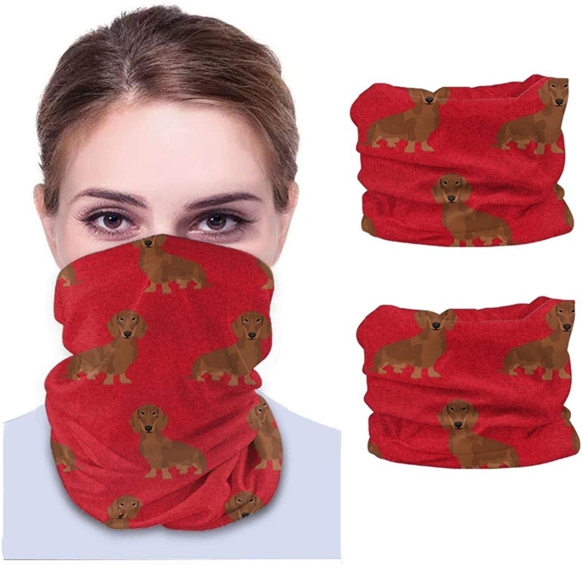 Dachshund face Towel Women UV Chiffon Neck Gaiter Adjustable Face Scarf Bandana Ear Loops for Dust & Sun