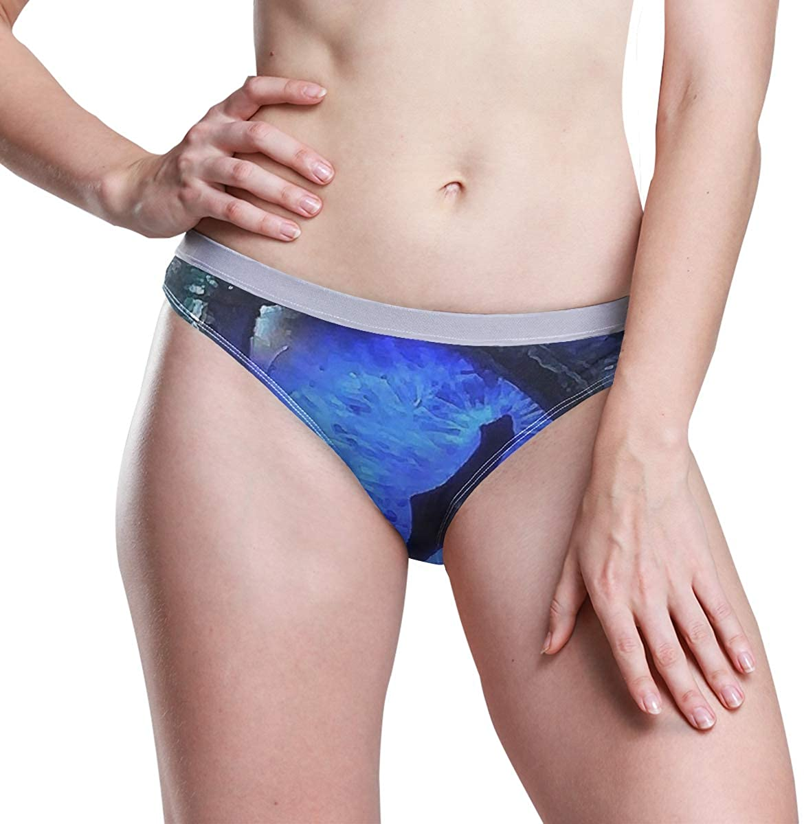 SLHFPX Blue Mysterious Dragon Eye Women's Underwear Ladies Hipster Panties Low Rise Briefs Thong