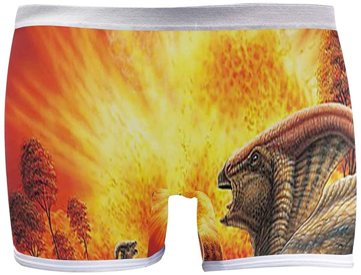 SLHFPX Dinosaur Watching Volcano Boyshort Panties Womens Long Leg Underwear Briefs Boy Shorts