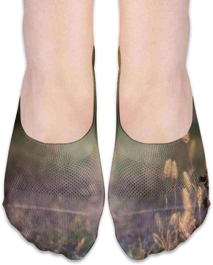 FriendEver No Show Socks,Nature Grass Lawn Casual Invisible Flat Socks,Breathable Anti-Odor Low Cut Women Cotton Sox,Non Slip Liner Sock