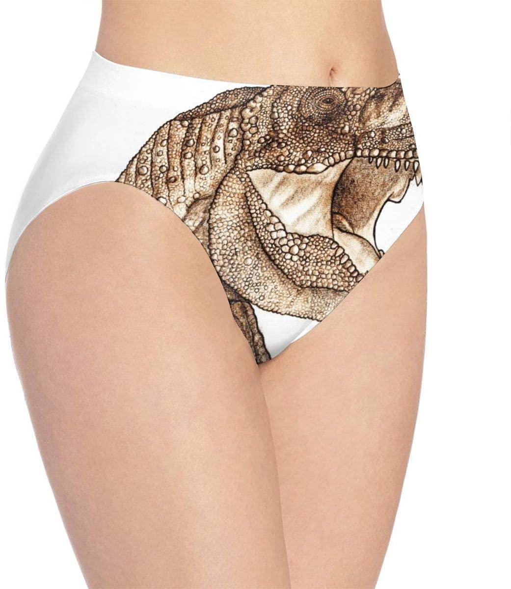 Kjaoi 3D Print Soft Women's Underwear, Dinosaur Fashion Flirty Sexy Lady's Panties Briefs