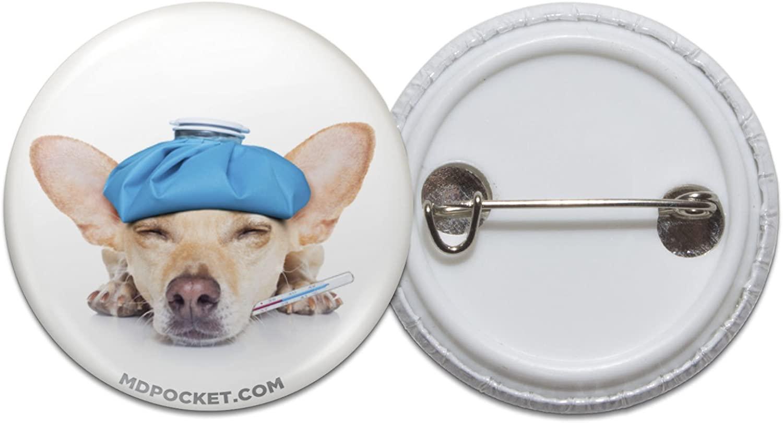 Sick Chihuahua Pinback Button