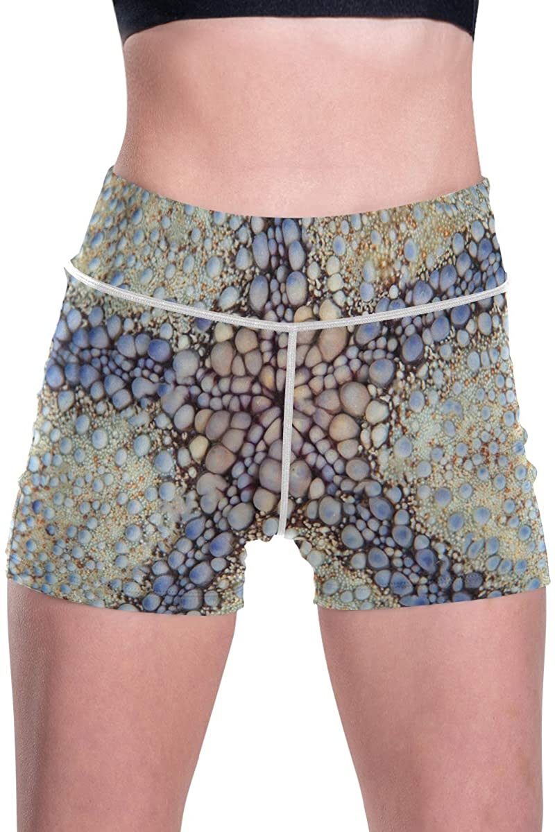 SLHFPX Tropical Coral Reef Starfish Women's High Waist Yoga Shorts Mesh Workout Running Shorts