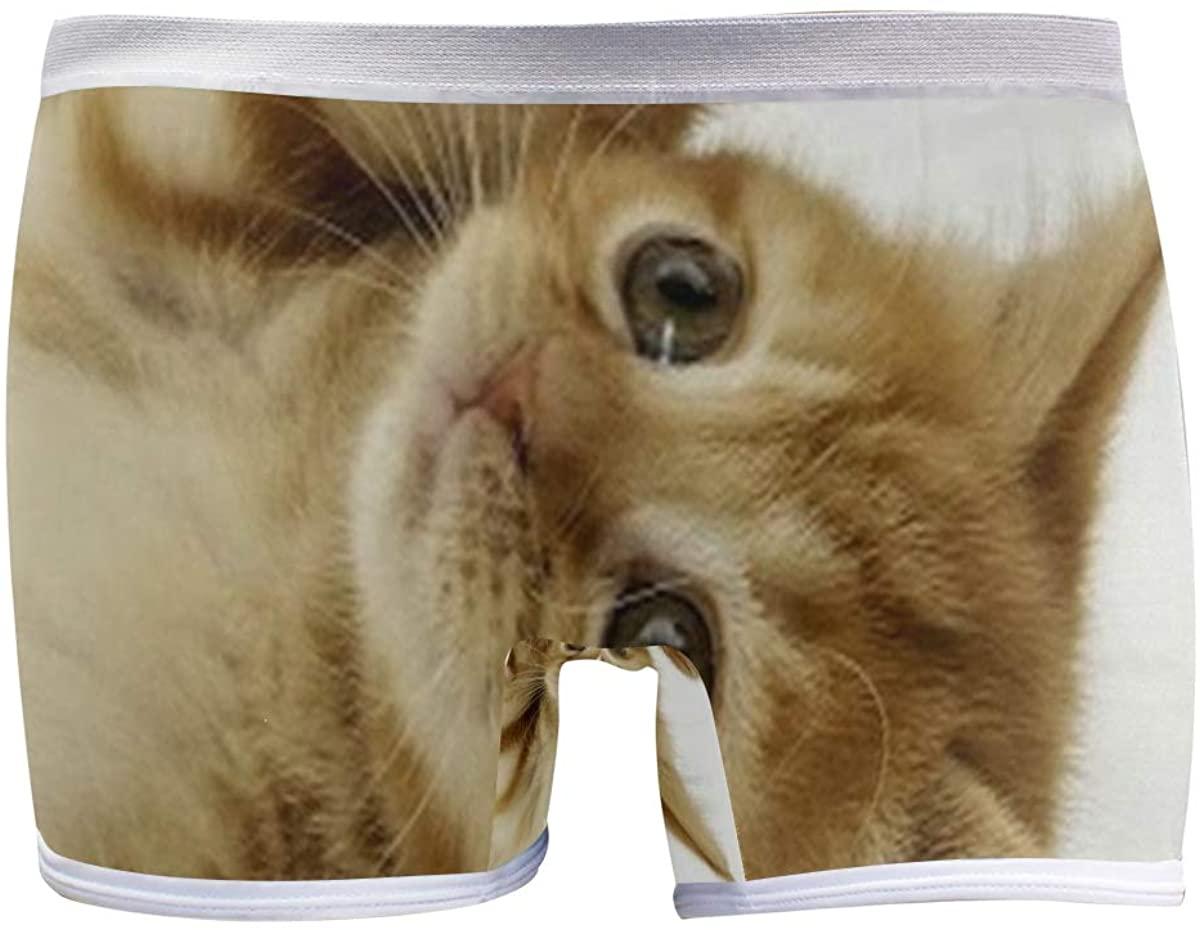 SLHFPX Cute Cat Kittens Women's Boyshort Panties Comfort Underwear Briefs Boy Shorts