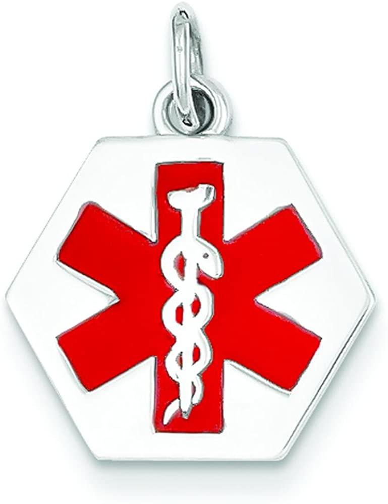 14K White Gold Hexagon Enamel Medical ID Charm 21mm