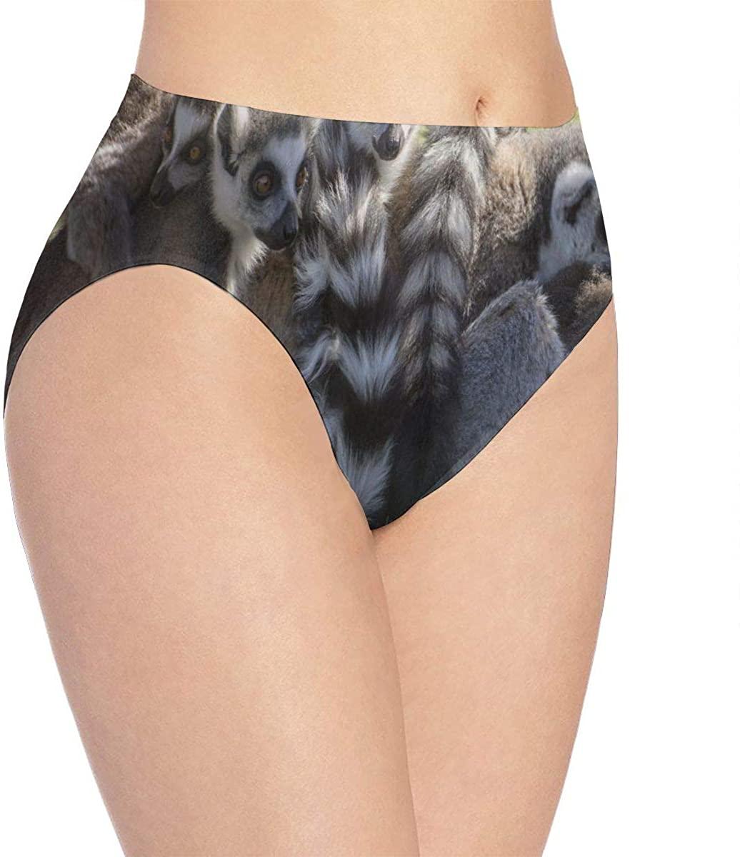 Womens Underwear Cute Animal Lemures Family Hot Bikini Brief Hipster Panties Panty Ladies