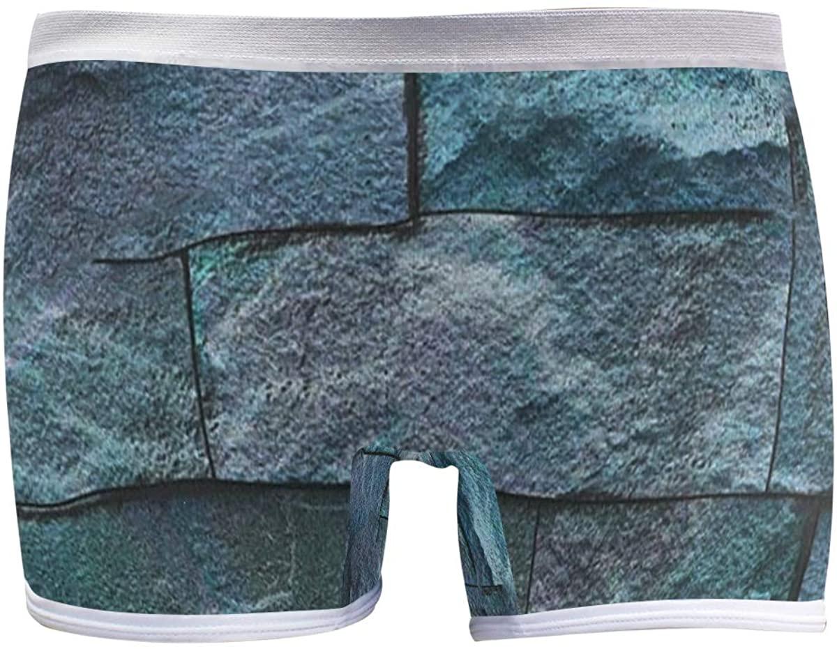 SLHFPX Colorful Vintage Ceramic Tiles Wall Boyleg Panties Womens Boyshort Underwear Soft Boxer Briefs Boy Shorts