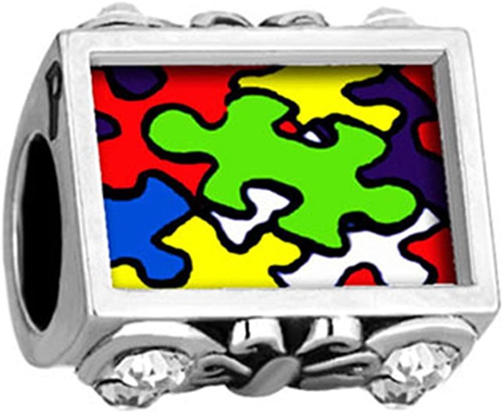LilyJewelry Autism Awareness Puzzle Piece Photo Charm Beads for Bracelets