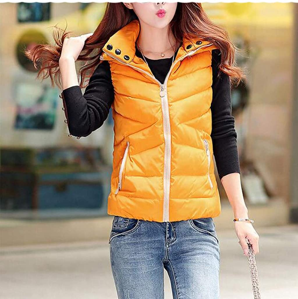 LVYING Womens Packable Lightweight Down Vest Stand Collar Winter Outdoor Puffer Vest with Hood