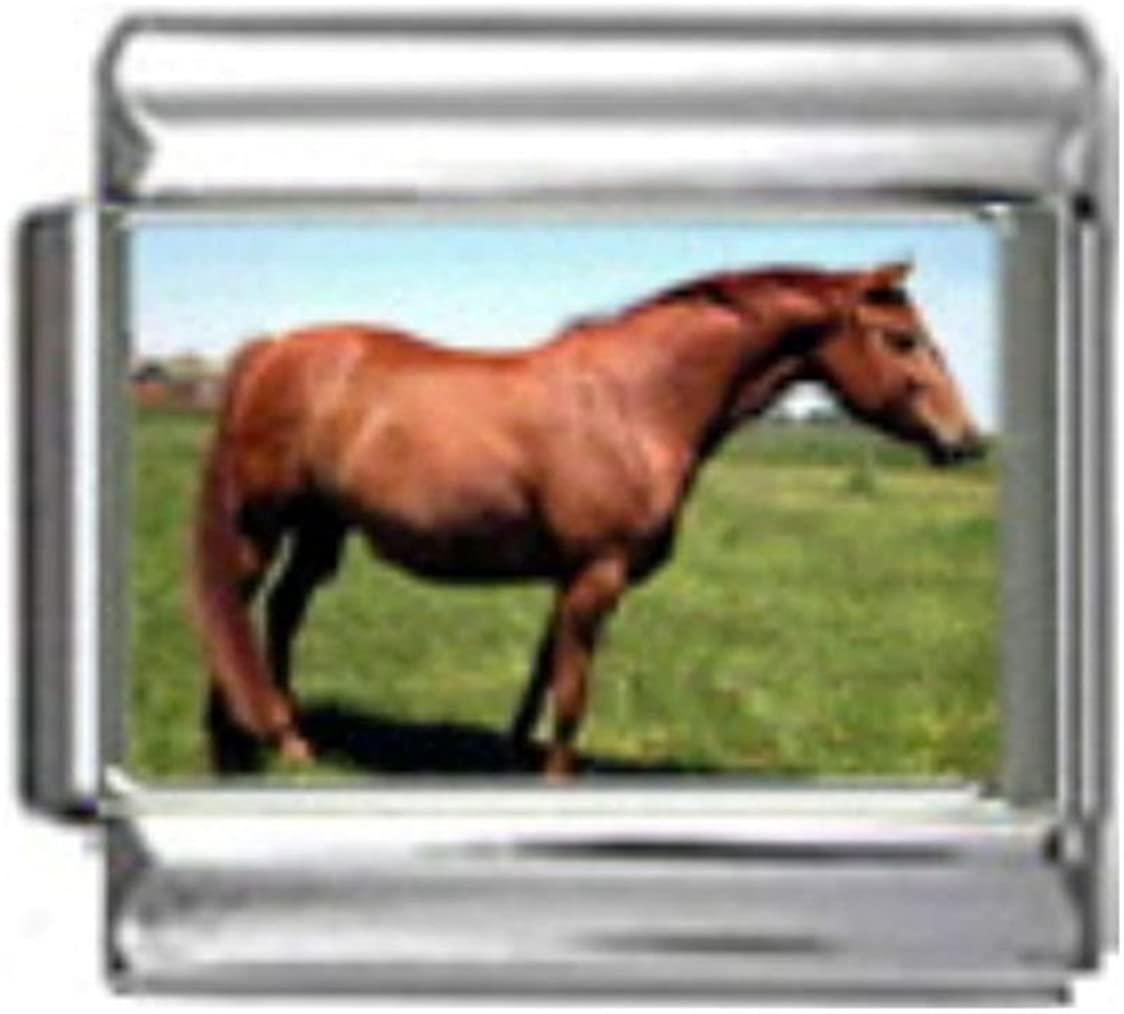Stylysh Charms HANOVERIAN HORSE Photo Italian 9mm Link HO042 Fits Nomination Classic