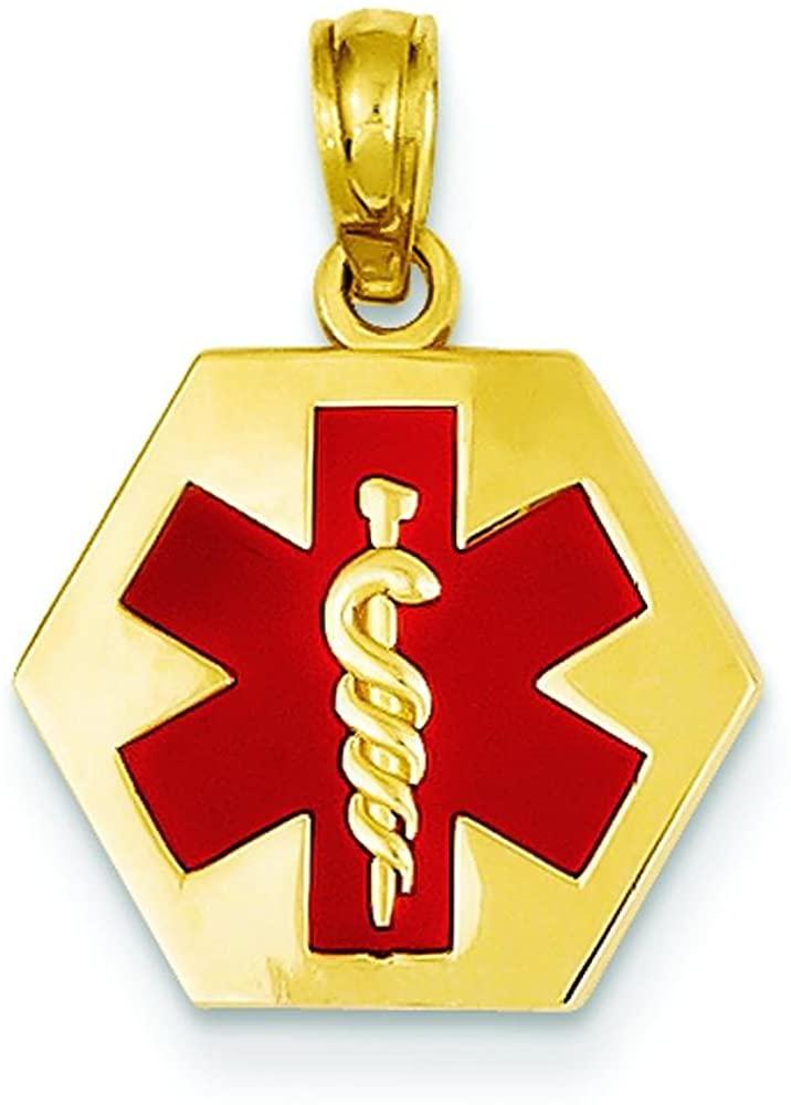 14K White Gold Hexagon Enamel Medical ID Charm 19mm