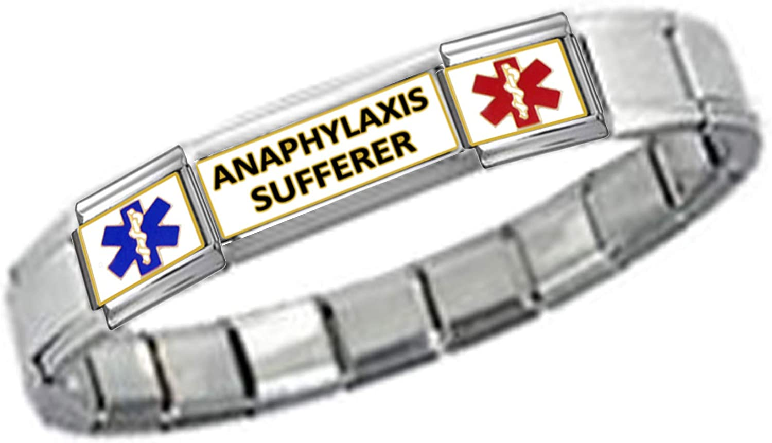 Stylysh Charms Anaphylaxis ID 9mm Link Silver Tone Matte Bracelet