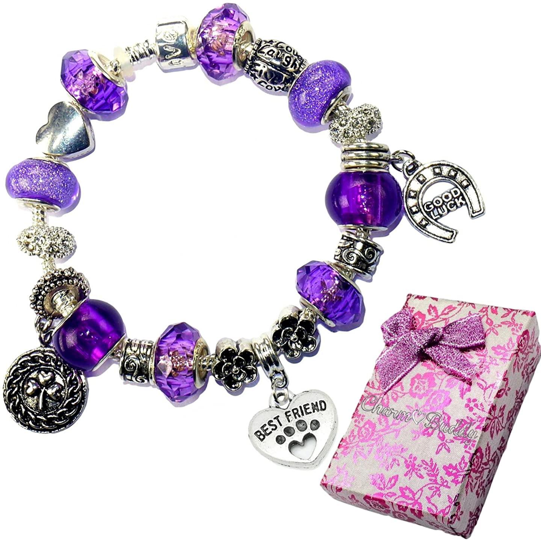 Pet Paw Dog Cat Friend Purple Crystal Pandora Style Bracelet With Charms Gift Box
