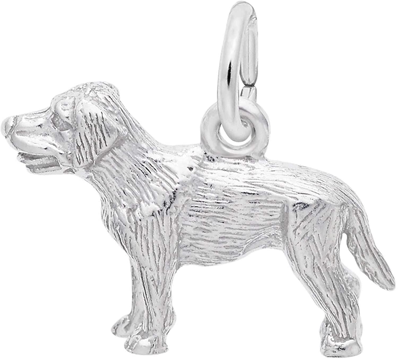 Rembrandt Charms Labrador Charm