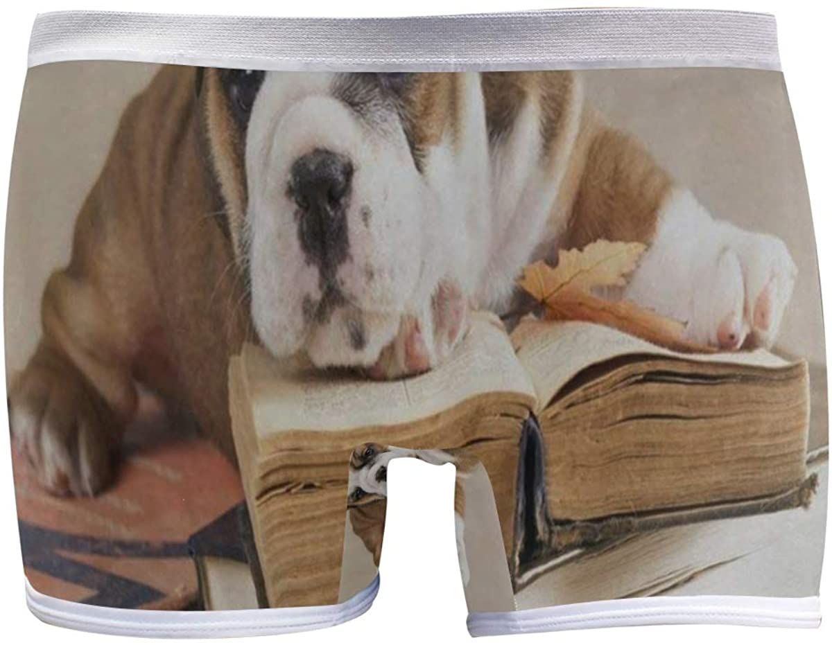 SLHFPX Bulldog Puppy with Books Women's Seamless Boyshort Sport Panty Stretch Underwear Boy Shorts