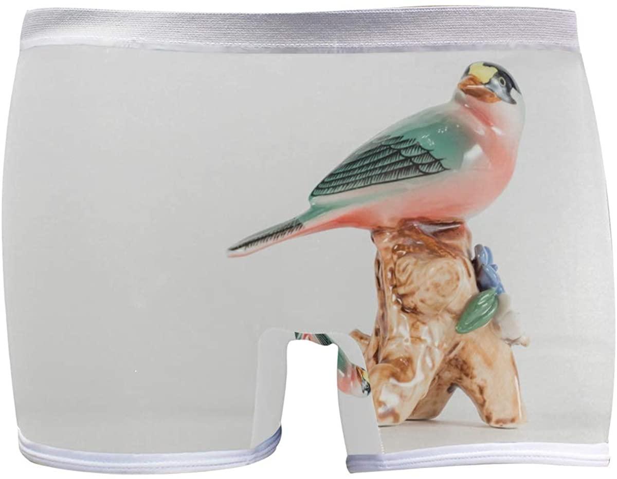 SLHFPX Womens Underwear Boxer Briefs Figurine Bird Animal Hummingbird Ladies Comfort Boy Shorts Panty