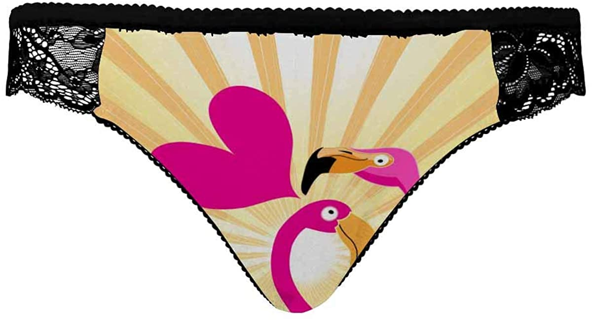 INTERESTPRINT Underwear Panties Hipster Panties Lace Briefs for Women Lovers Pink Flamingos with Rays