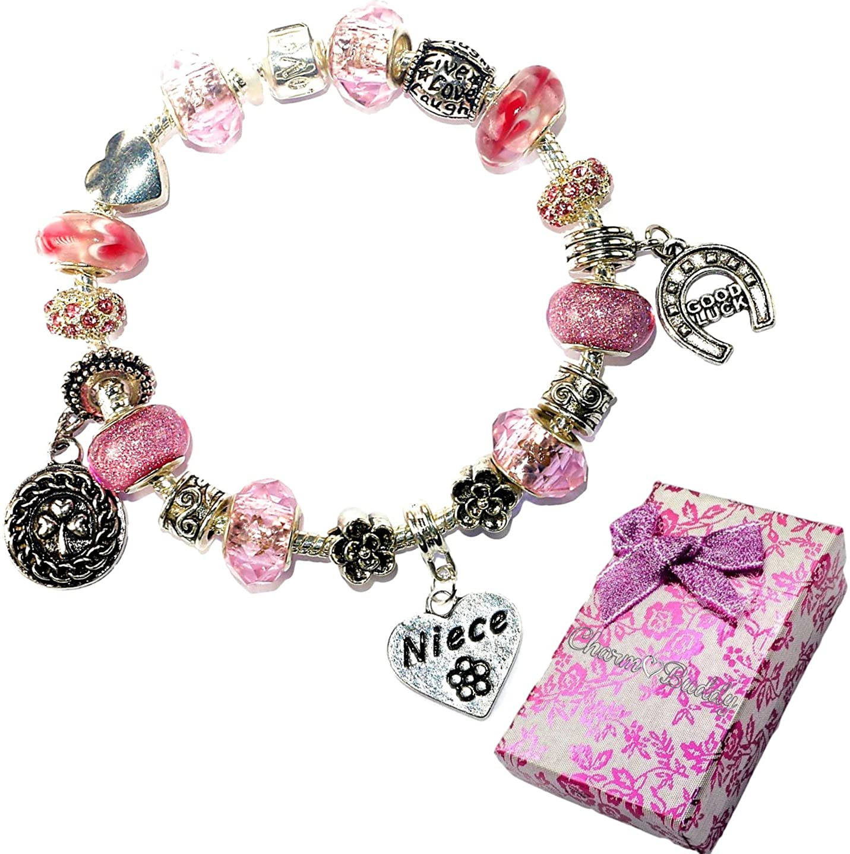 Charm Buddy Niece Pink Purple Crystal Good Luck Pandora Style Bracelet With Charms Gift Box